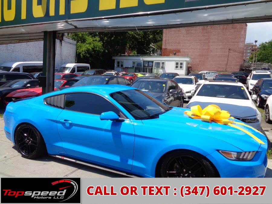 Used 2017 Ford Mustang in Jamaica, New York | Top Speed Motors LLC. Jamaica, New York