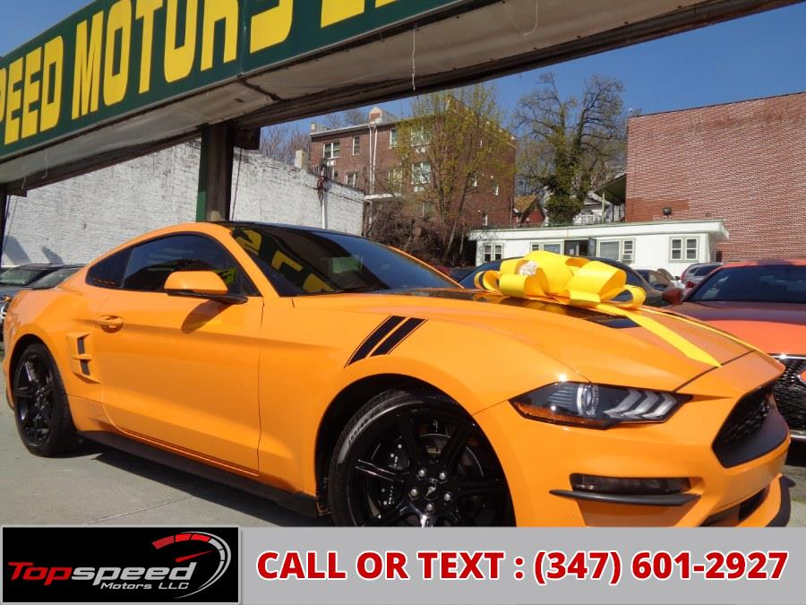 Used 2019 Ford Mustang in Jamaica, New York | Top Speed Motors LLC. Jamaica, New York
