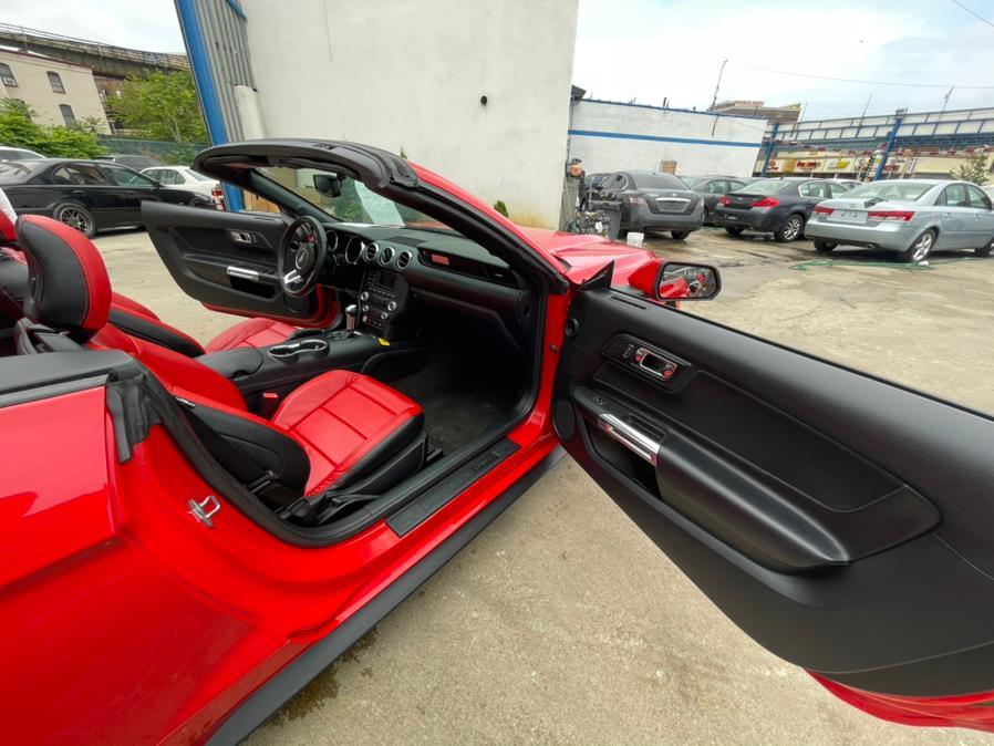 Used Ford Mustang 2dr Conv V6 2016 | Brooklyn Auto Mall LLC. Brooklyn, New York