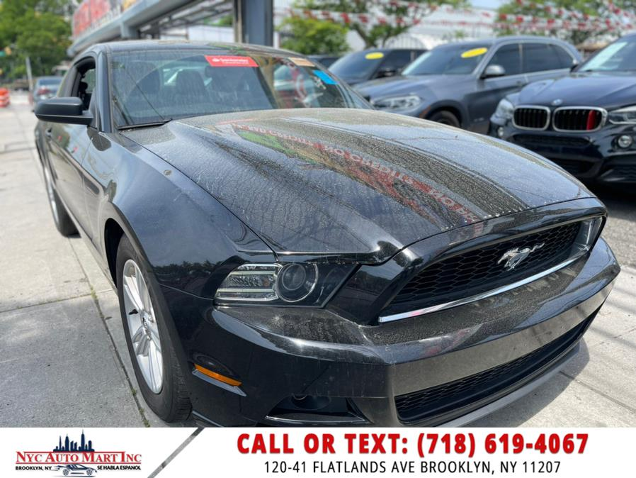 Used Ford Mustang 2dr Cpe V6 Premium 2014   NYC Automart Inc. Brooklyn, New York