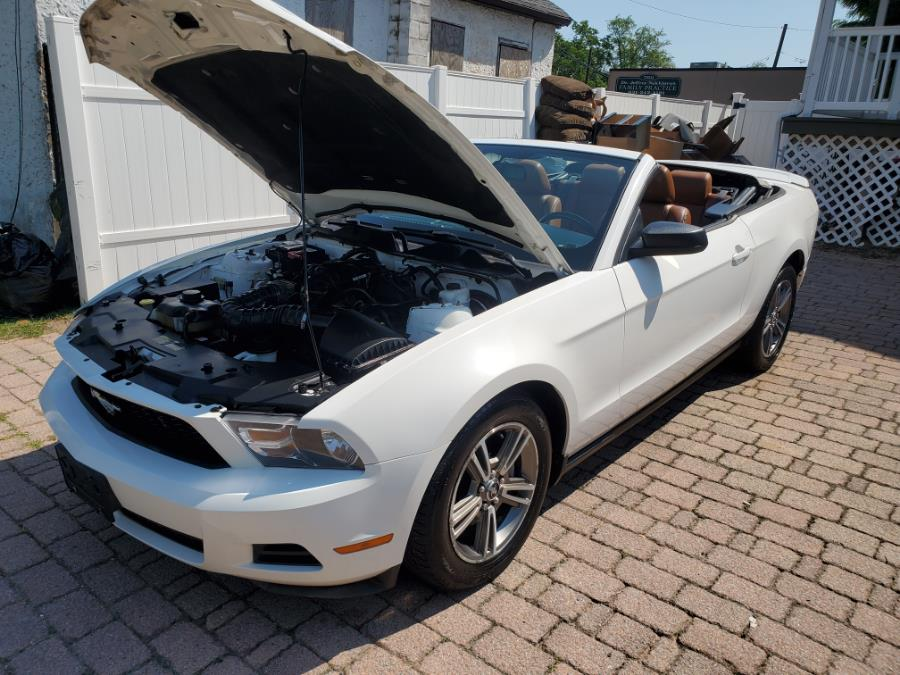Used Ford Mustang 2dr Conv V6 Premium 2010   SGM Auto Sales. West Babylon, New York