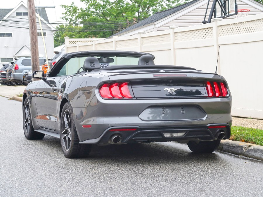 Used Ford Mustang EcoBoost 2019 | Auto Expo Ent Inc.. Great Neck, New York
