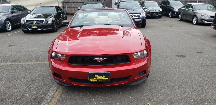 Used Ford Mustang 2dr Conv V6 Premium 2012 | Victoria Preowned Autos Inc. Little Ferry, New Jersey